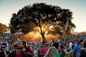 festivaltree