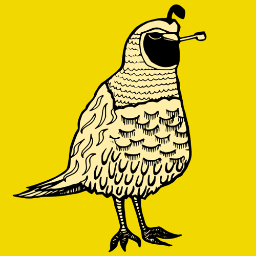 The Quail Pipe – Sexism in the workplace: How negative stereotypes don'thelp