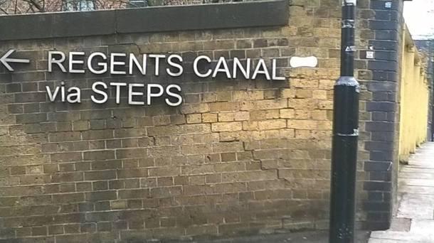 Regents tampon